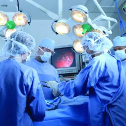 Neurosurgery   John Nasseff Neuroscience Institute   Abbott