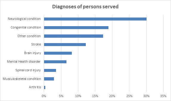 Drivers assessment diagnoses of persons served chart