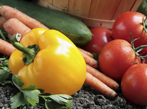 Fresh bell peppers, carrots and tomatoes sit next a wooden basket in a garden. Plant your own garden at Unity Hospital this summer