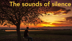 The sounds of silence - teaser