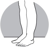 drawing of legs and feet