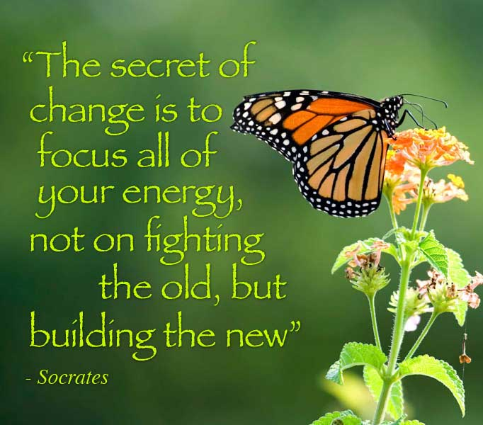 The secret of change is to focus all of your energy, not on fighting the old, but building the new. Socrates