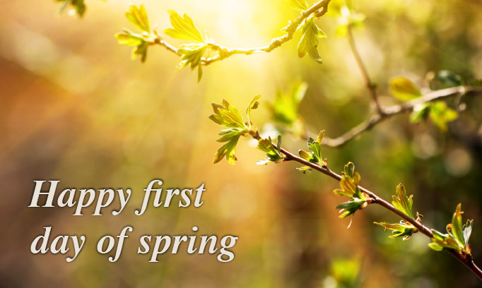 268168 ah hsg happy first day of spring quote 2 682x408