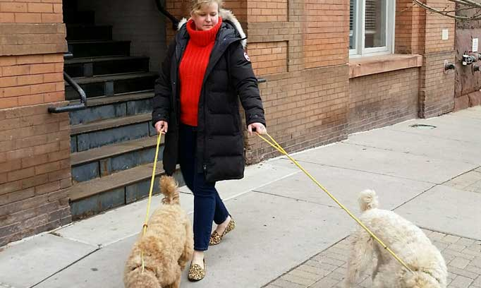 Dr. Wang walks her dogs