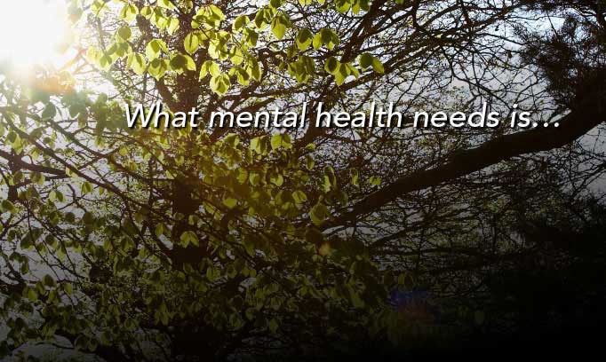 what mental health needs