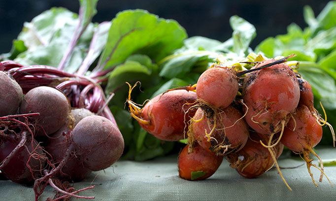 Farmers market recipe citrus beet salad BeetsNourish682x408GettyImages1039811872