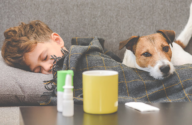 sick young boy sleeps on couch with plaid blanket and his dog